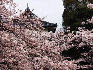 Vista del Palacio Imperial de Tokyo