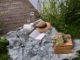 Día internacional de picnic