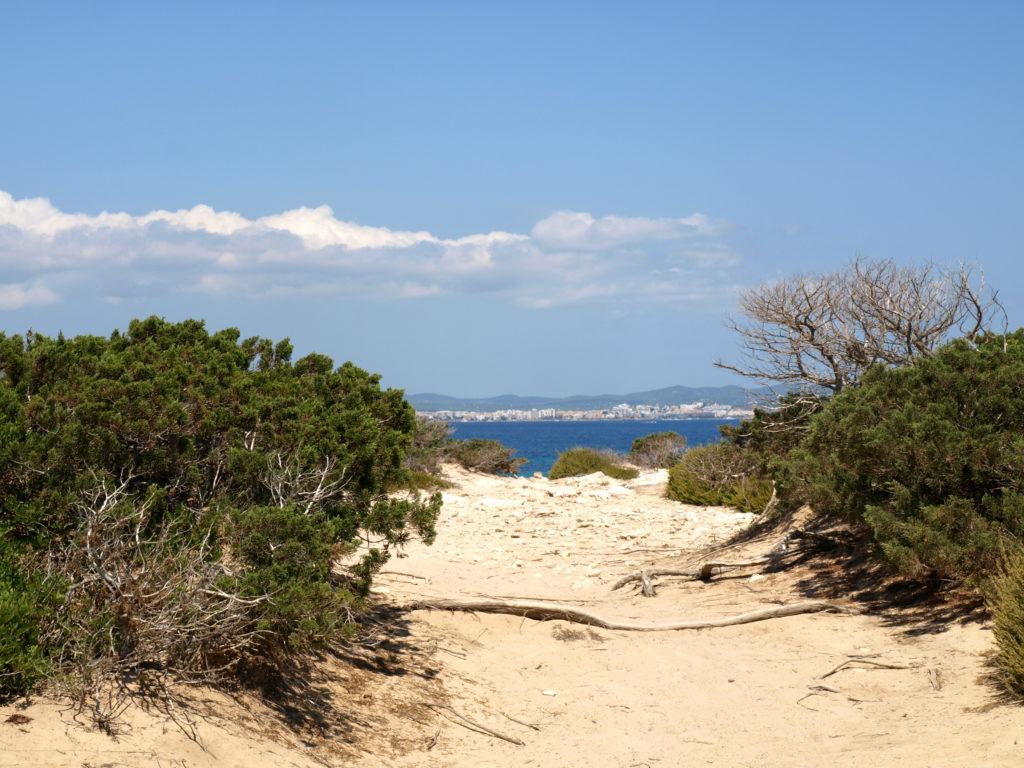 Ibiza   Platja Des Cavallet   panoramio 1