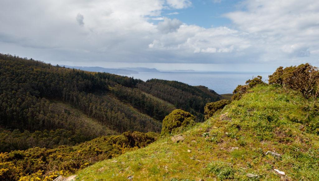 Monte Purrido (Galicia)