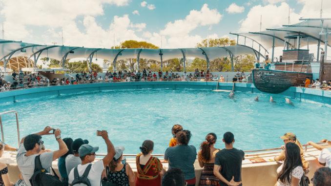 Aquarium de Key Biscayne