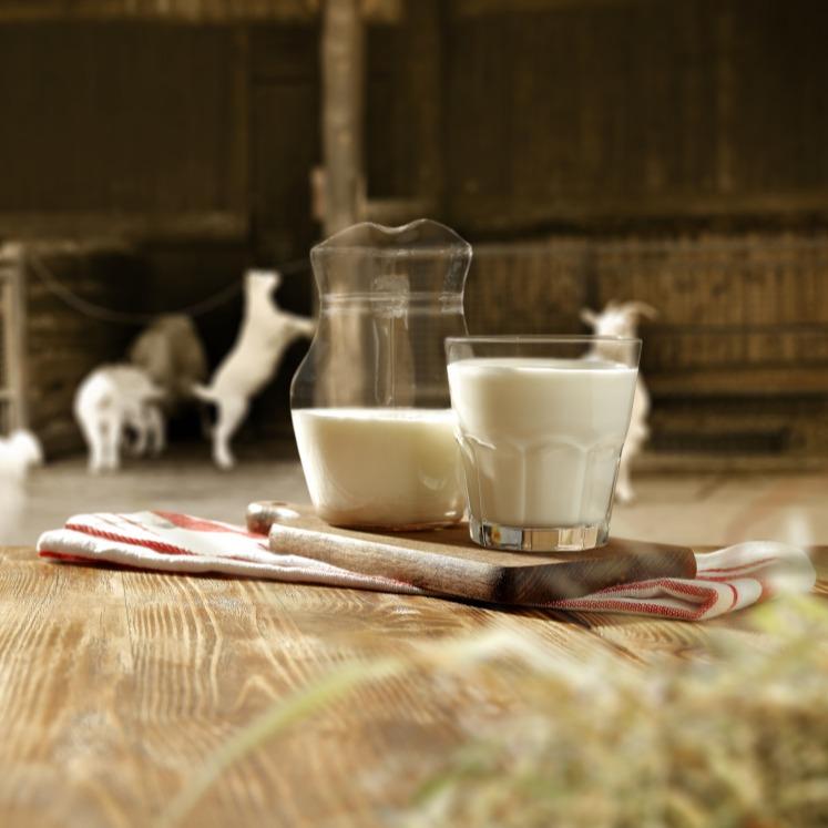 quesos de cabra Valle del Loira