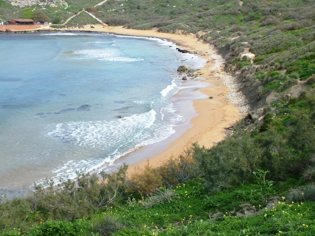 Ghajn Tuffieha Bay 13